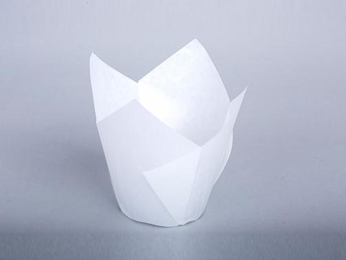 Cupcake-Kapsulu-beyaz-resim-2583