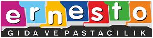 ernesto-logonew